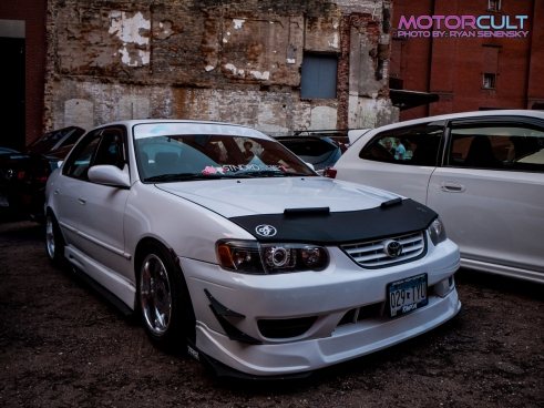 White Corolla 1250